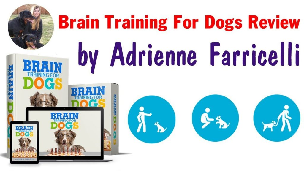 brain training for dogs member login